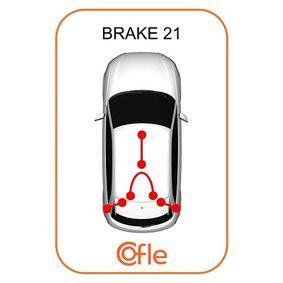 11.5454 Vajer, parkeringsbroms COFLE Test