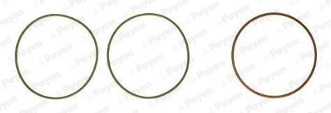HT5038 PAYEN O-ringssats, cylinderfoder: köp dem billigt