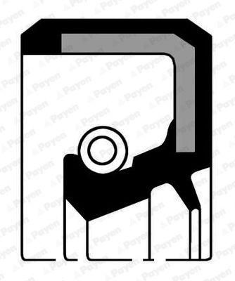 PAYEN: Original Kurbelwellendichtung NJ353 (Innendurchmesser: 35,00mm, Ø: 49,00mm)