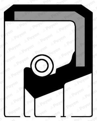 NISSAN TERRANO 2007 Wellendichtring, Schaltgetriebe - Original PAYEN NJ399