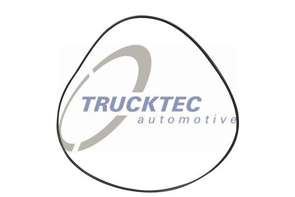MINI PACEMAN Dichtring, Kühlmittelrohrleitung - Original TRUCKTEC AUTOMOTIVE 08.17.019