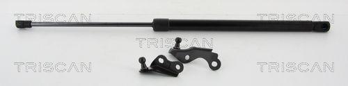 Original IVECO Tailgate struts 8710 13288