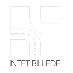 8A0424 Luftfilter RIDEX Test