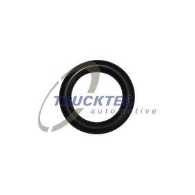 Įsigyti ir pakeisti tarpiklis, degalų linija TRUCKTEC AUTOMOTIVE 02.13.121