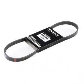 Cinghia Poly-V 305P0172 con un ottimo rapporto RIDEX qualità/prezzo