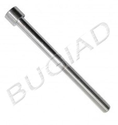 OE Original Zylinderschrauben BSP21163 BUGIAD