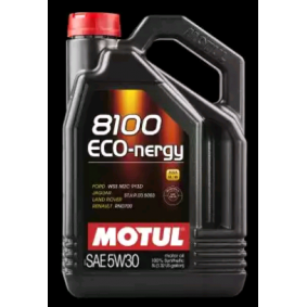 8100ECONERGY5W30 MOTUL 8100 5W-30, ECO-NERGY, Inhalt: 5l Motoröl 102898 günstig kaufen