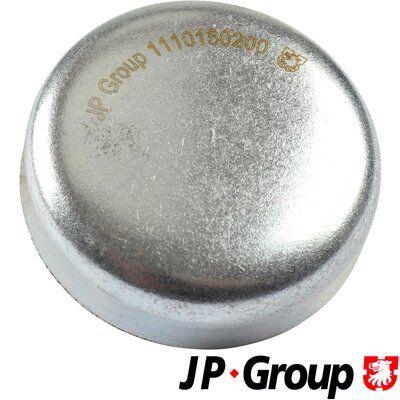 JP GROUP: Original Froststopfen Motorblock 1110150200 ()