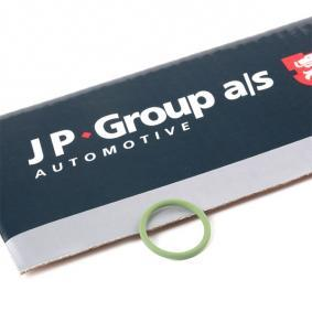 Anello tenuta, Iniettore JP GROUP 1115550600 comprare e sostituisci