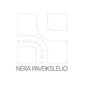 Įsigyti ir pakeisti laikantysis rėmas, duslintuvas JP GROUP 1121603500