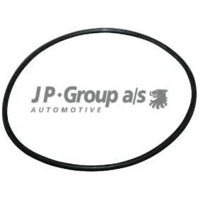 Įsigyti ir pakeisti tarpiklis, diferencialas JP GROUP 1132100100