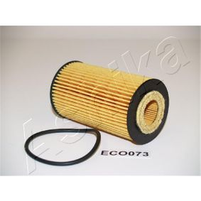 10-ECO073 Filter ASHIKA Erfahrung