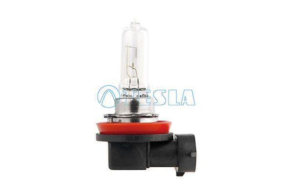 B10901 TESLA PGJ19-5, 12V, 65W Glühlampe, Hauptscheinwerfer B10901 günstig kaufen