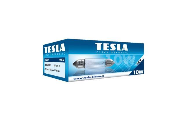 OE Original Glühlampe Kennzeichenbeleuchtung B86202 TESLA
