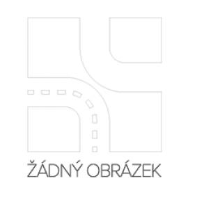 686S0002 Zapalovací svíčka RIDEX Test