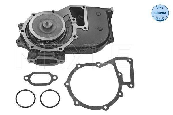Comprare MFF0023 MEYLE Prefiltro, ORIGINAL Quality Alt.: 52mm Filtro carburante 034 009 0003 poco costoso