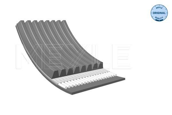 MEYLE V-Ribbed Belts for IVECO - item number: 050 008 1625