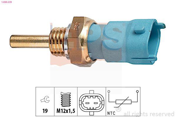 KW530239 EPS Made in Italy - OE Equivalent Sensor, Öltemperatur 1.830.239 günstig kaufen