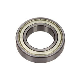 6007ZZ MAXGEAR Lager 10-0209 günstig kaufen