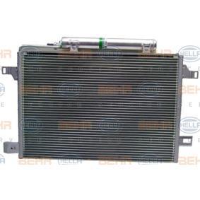 Klimaanlage BEHR HELLA SERVICE 8FC 351 301-674  Kondensator