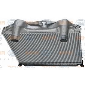 8ML376724371 Ladeluftkühler HELLA online kaufen