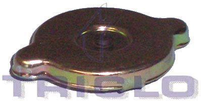 Radiatoriaus dangtelis 318071 TRICLO — tik naujos dalys