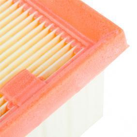 Mann Filter C 2519 Filtro Aria