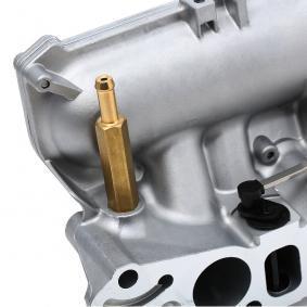 7.00373.12.0 Intake Manifold Module PIERBURG original quality