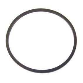 Įsigyti ir pakeisti tarpiklis, degalų filtras ELRING 733.431