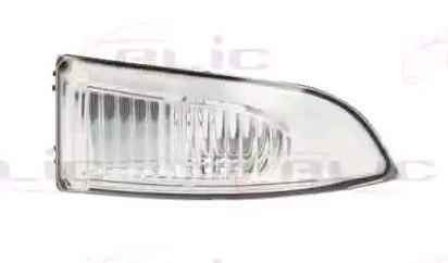 Original BMW Seitenmarkierungsleuchte 5403-09-052106P