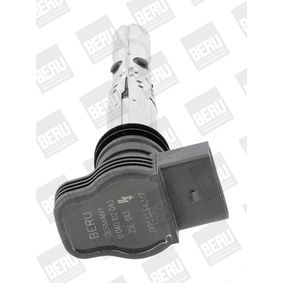 ZSE043 Ignition Coil BERU original quality
