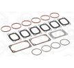 Acquisti ELRING Kit guarnizioni, Collettore aspirazione / scarico 550.660 furgone