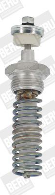 GH010 BERU Glow Plug, parking heater - buy online