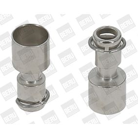 buy and replace Plug Sleeve, ignition system BERU RHB001