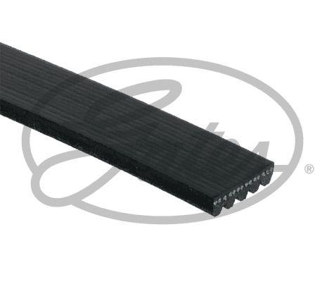 5PK1123XS Keilrippenriemen & Keilrippenriemensatz GATES - Markenprodukte billig