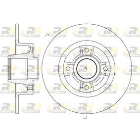 Įsigyti ir pakeisti stabdžių diskas ROADHOUSE 6750.00