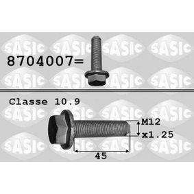SASIC Surub fulie 8704007 cumpărați online 24/24
