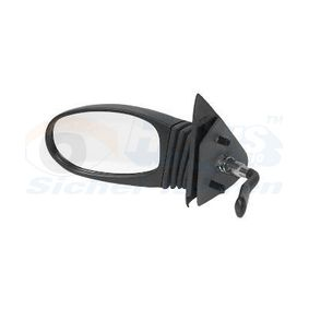 buy VAN WEZEL Outside Mirror 1601803 at any time