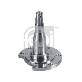 buy FEBI BILSTEIN Kingpin, axle beam 29656 at any time