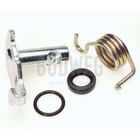 acheter BUDWEG CALIPER Kit de réparation, levier de frein de stationnement (étrier) 209910 à tout moment