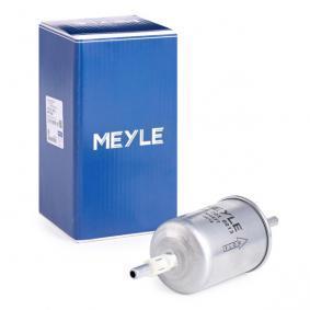 ostke ja asendage Kütusefilter MEYLE 100 201 0013