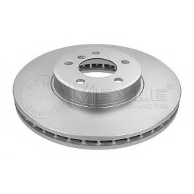 Brake Disc 315 521 3025/PD for BMW X5 at a discount — buy now!