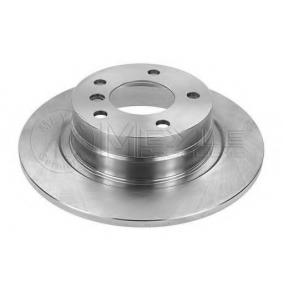 Brake Disc 315 523 3068 for BMW 3 Series at a discount — buy now!