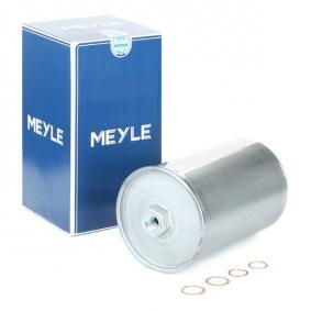 buy and replace Fuel filter MEYLE 514 323 0003