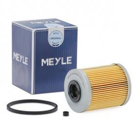 buy and replace Fuel filter MEYLE 614 323 0000