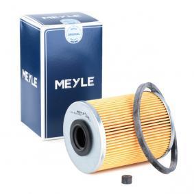 palivovy filtr 614 818 0000 pro OPEL nízké ceny - Nakupujte nyní!