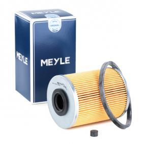 Fuel filter 614 818 0000 for OPEL cheap prices - Shop Now!