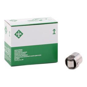 Compre e substitua Espigão, bomba de alta pressão INA 711 0244 10