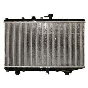 Radiatore, Raffreddamento motore NRF 53828 comprare e sostituisci