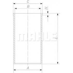MAHLE ORIGINAL Canna del cilindro 002 WV 06 acquista online 24/7